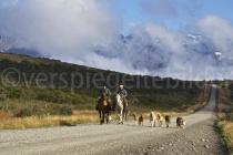 Gauchos im Parque Nacional Torres del Paine, Chile