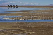 Blick über den Salar de Uyuni