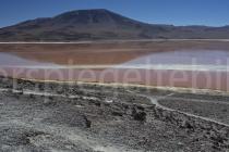 Blick auf die Laguna Colorada, Bolivien