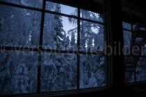 Blick aus dem Mökki in den Wald von Luosto