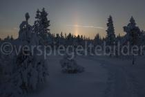 schneebedeckte Bäume im Sonnenuntergang bei Luosto