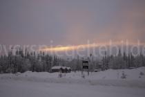 schneebedeckte Bäume bei Luosto im Abendlicht