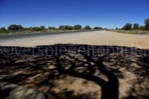 Schatten eines Baumes bei Mariental, Namibia
