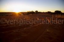 Sonnenuntergang auf einer Sanddüne bei der Kalahari Farm in Stampriet, Namibia