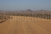 Blick über das Diamant-Sperrgebit in der Namibwüste