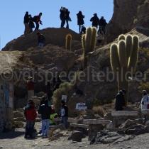Menschen auf der Isla Incahuasi zwischen Sukkulenten