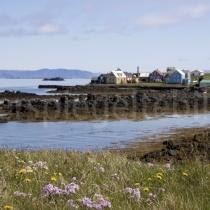 Insel Flatey, Island