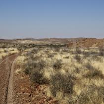 Fahrspurt durch die Schafweide der Dabi Farm bei Helmeringhausen, Namibia