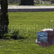 Spiegelung von Wasser vor einer grünen Wiese