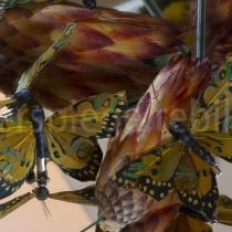 Spiegelungen von Schmetterlingen und Blüten in einer Spiegelkonstruktion