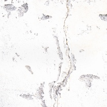 überbelichteter Riss in einer Mauer als abstrakte Landschaft