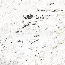 überbelichte Aufnahme eines Steilhangs als abstrakte Landschaft