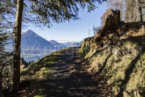 Spazierweg bei Beatenberg