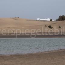 Naturschutzgebiet mit Sanddüne in Maspalomas auf Gran Canaria