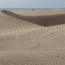 Sand-Dinosaurier in den Dünen von Maspalomas auf Gran Canaria