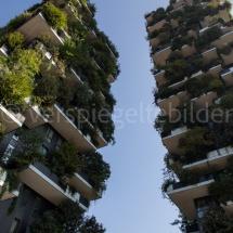 Bosco Verticale Hochhäuser mit Bepflanzung von unten mit Sonne