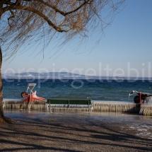Vereiste Sitzbänke und Gartengeräte am Ufer des Bodensees