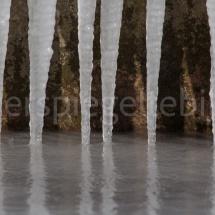 Eiszapfen am Ufer des Bodensees
