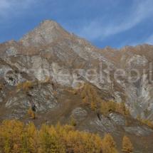Felsgebirge im Herbstkleid mit gelben Lärchen