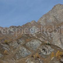 Bergpanorama mit vereinzelten gelben Lärchen