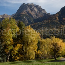 Bunte Herbstbäume vor Bergpanorama