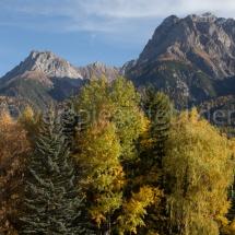 Bunte Herbstbäume vor Bergen